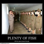 plenty of fish